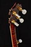 back headstock